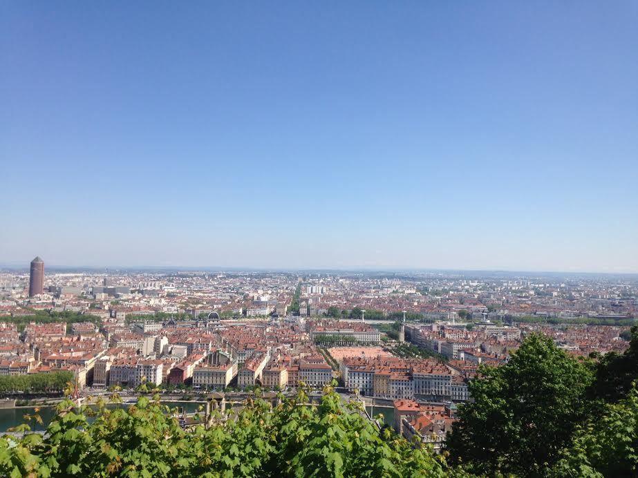 RIB à Lyon , premières photos ......