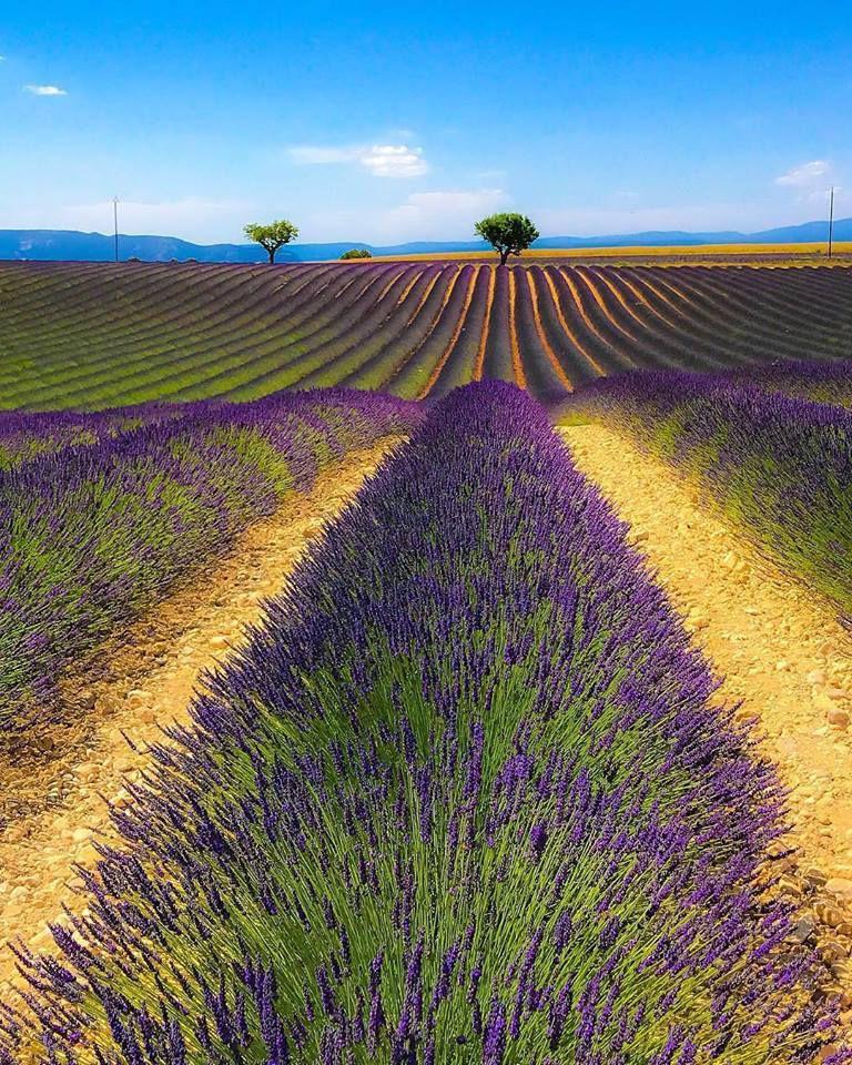 en Provence !