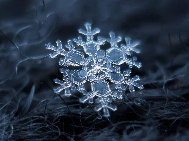 En attendant la neige .....