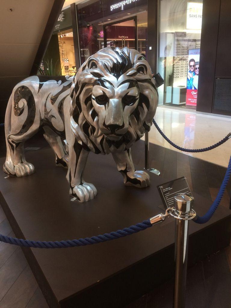 Pour Nilo le lion !