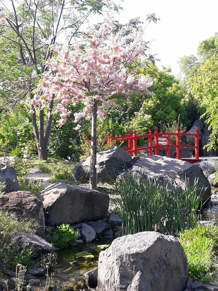 jardin botanique du parc Borély en 2018