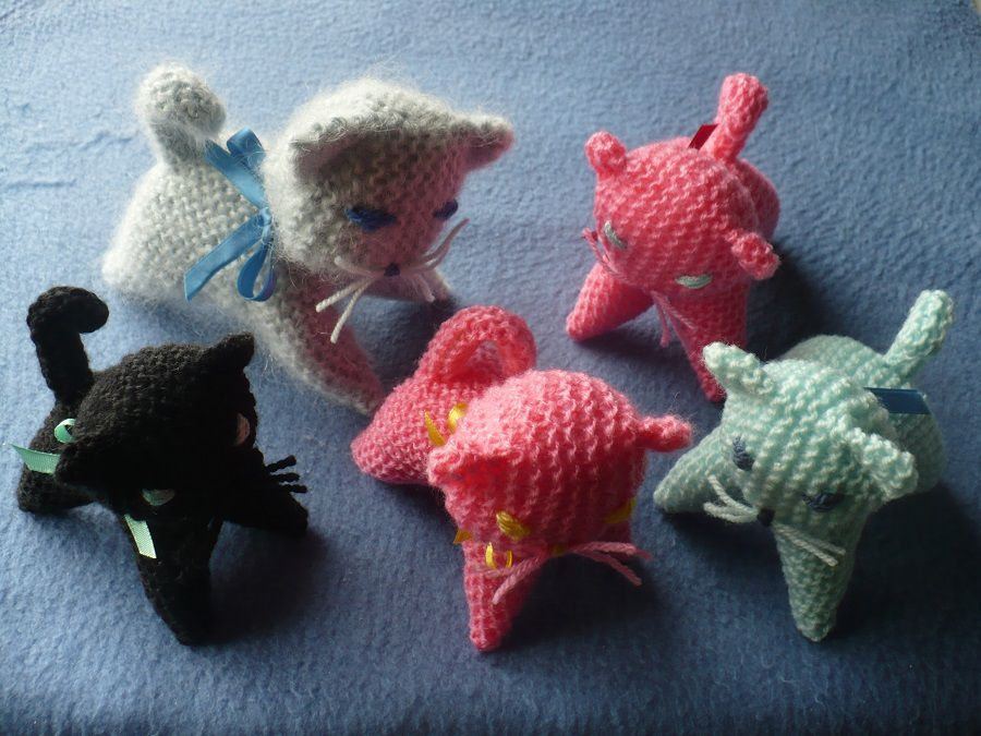 Atelier tricot : les chatons