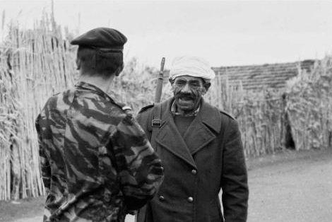 Guerre d'Algérie : qui a laissé massacrer les harkis ?