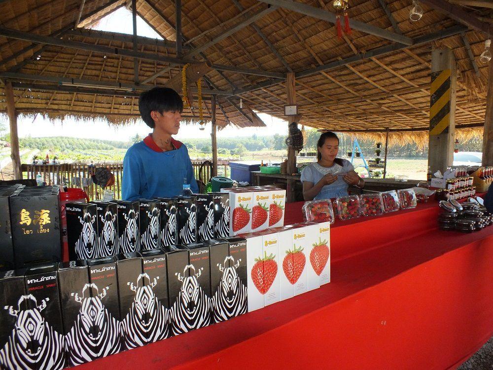 5 décembre 2018: Udonthani. Sortie à Phu Foilom.