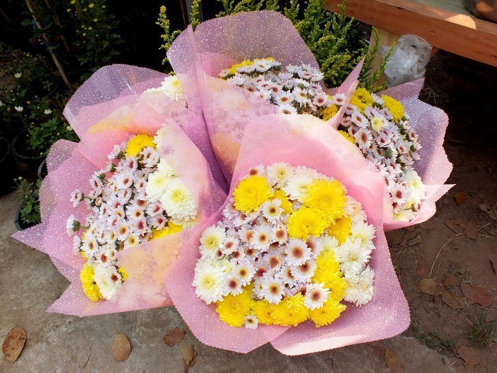 10 février 2019 : Udonthani : Visite du village aux fleurs de Baan Huai Samran