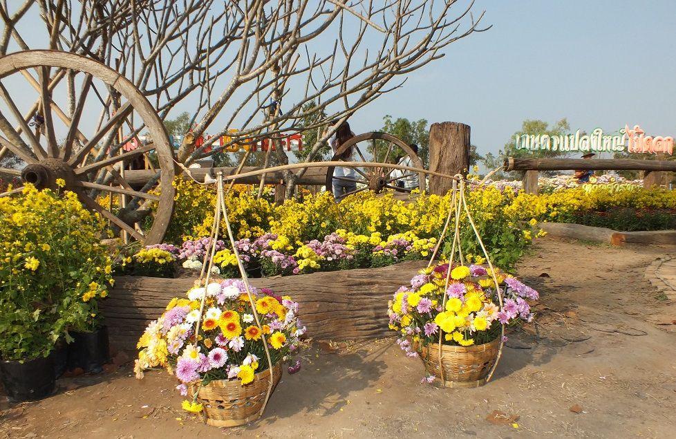 18 janvier 2020: Udonthani. Sortie au village aux fleurs.