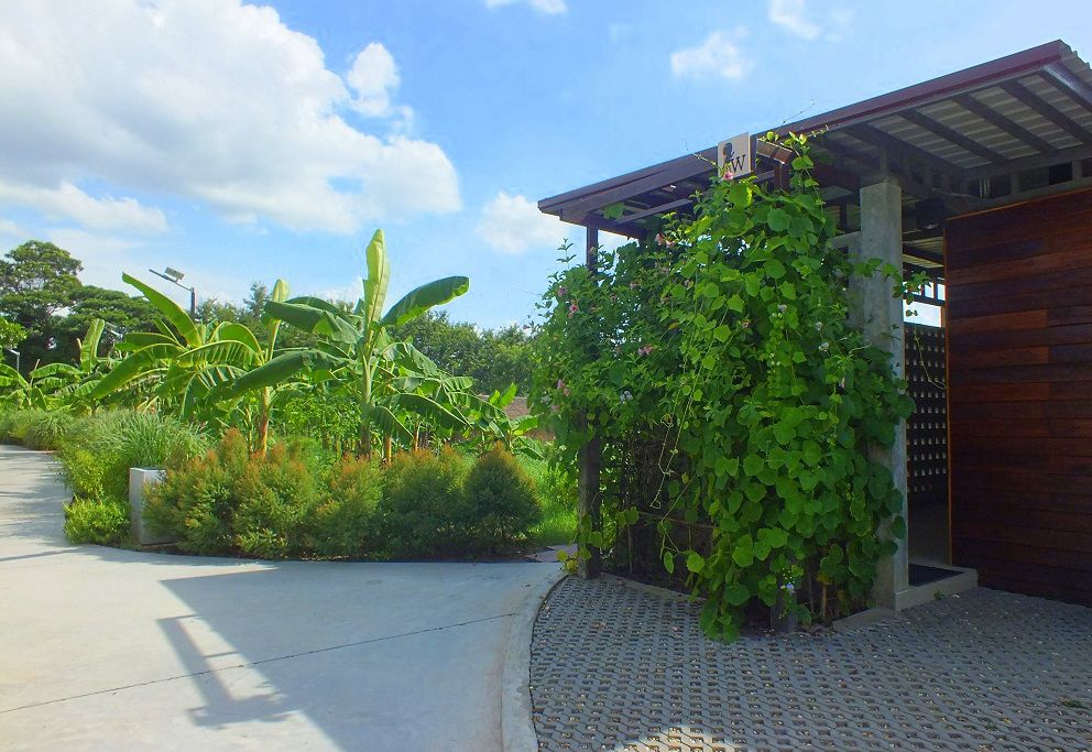 19 juillet 2020: Udonthani : Le « 154.7 Coffee Garden »