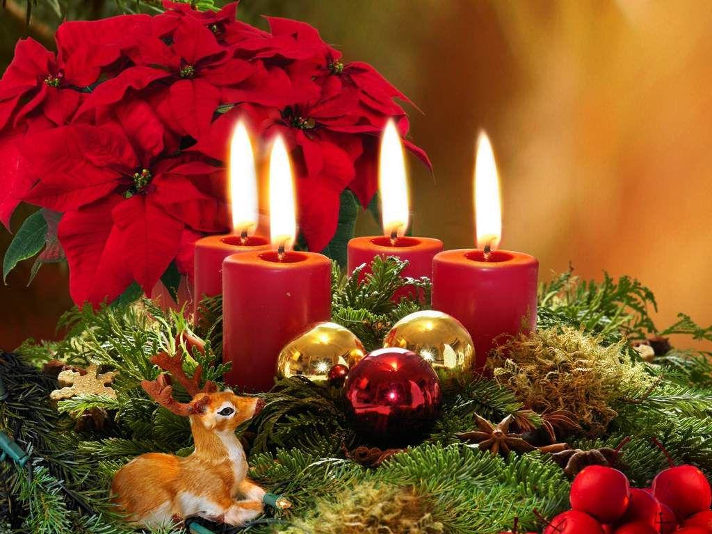 https://www.balticbeach.lv/special-offer/advent-lunch-in-jurmala/