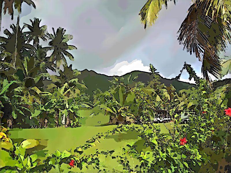 Rarotonga : des vacances au milieu du Pacifique