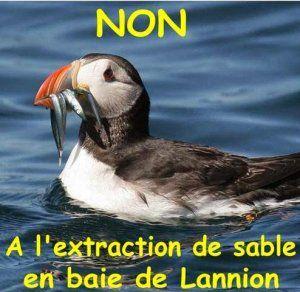 Baie de Lannion : la « timidité » de M. Hulot