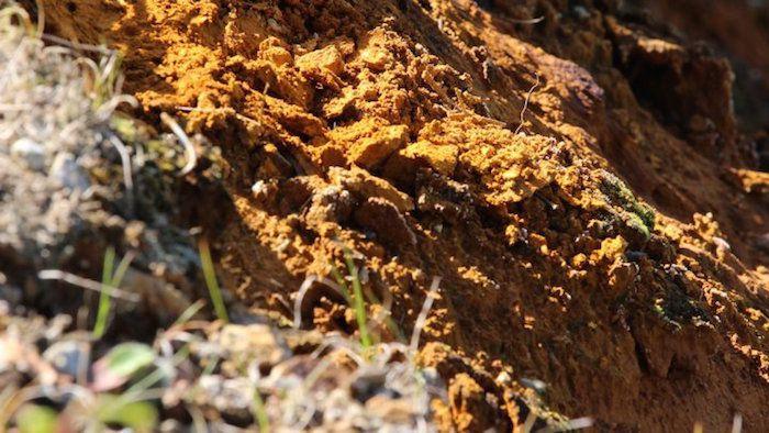 (Photo - La terre orangée gorgée de fer et chargée de toxiques tels que l'arsenic, à Salau, en Ariège, en octobre 2015)