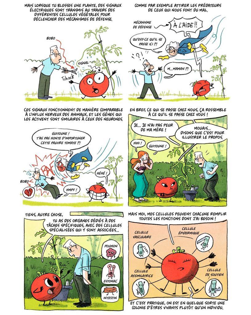 La folle histoire des plantes: Épisode 1 : Les plantes sont-elles vivantes ? (BD)