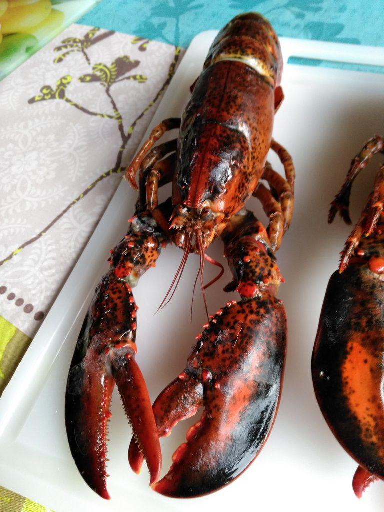 La bisque et ses homards - (bisque 100% homard)