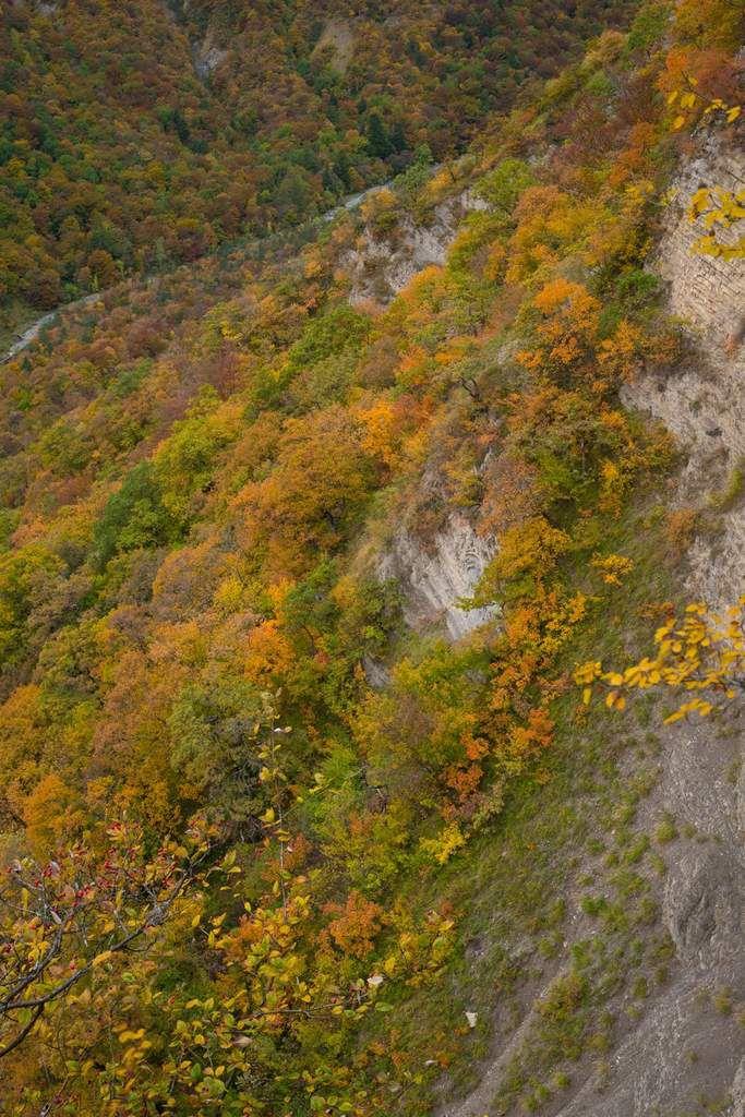 Chênes, érables... le versant quasi méditerranéen de Château-Nardent, raide et plein sud