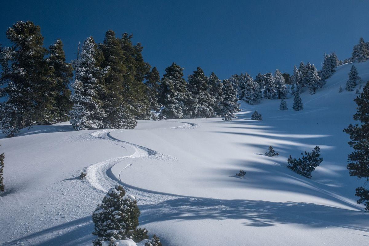 Qualité de la neige : on ne fait pas mieux