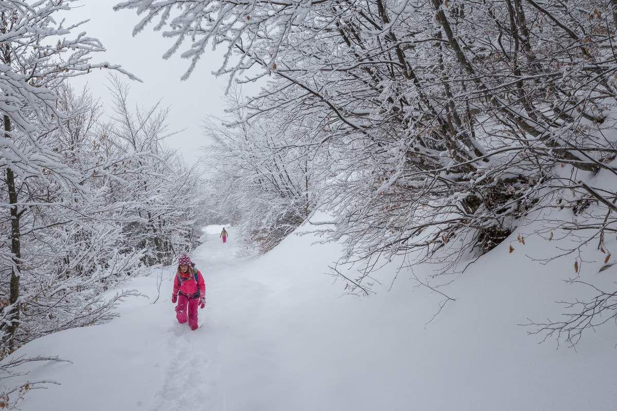Marcher, courir, sauter, glisser... jouer dans la neige !