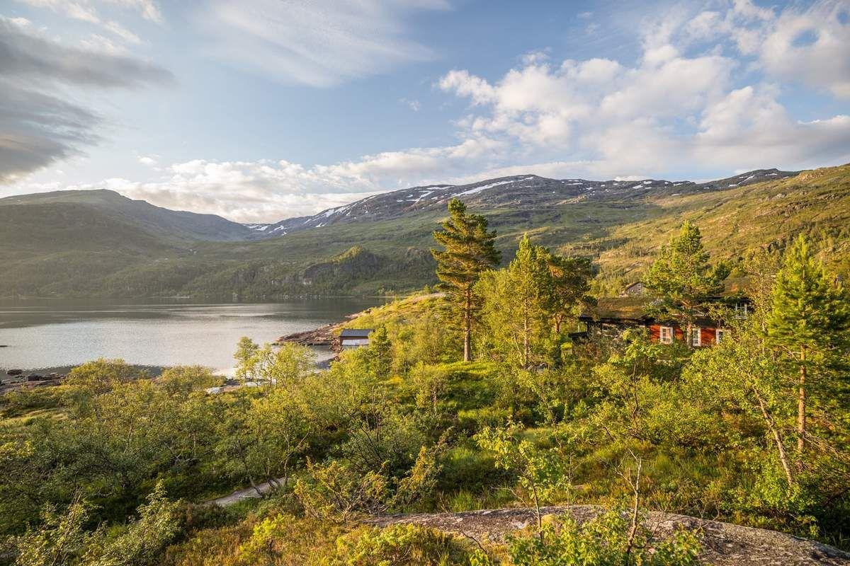 Cabanes nordiques autour du Reinsnosvatnet