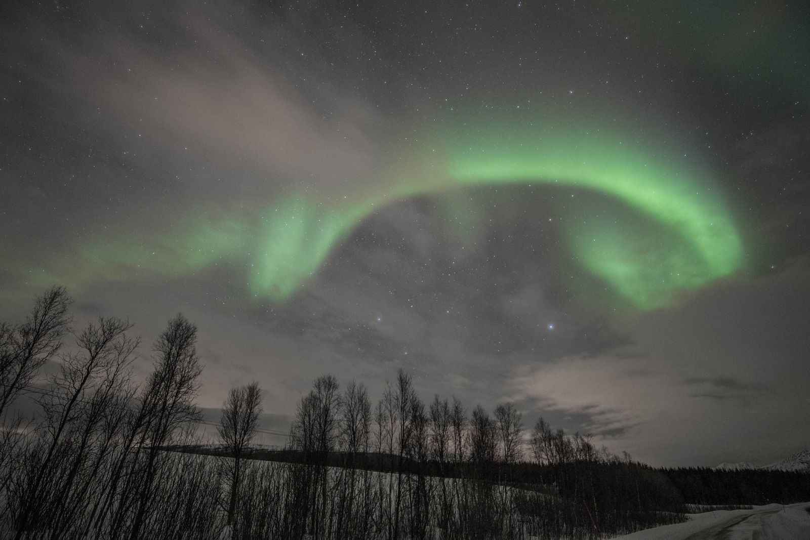 Fenêtre verte (brève) nocturne
