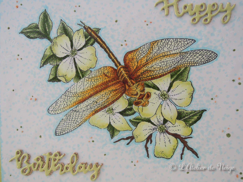 300 - Carte Anniversaire Brigitte 25 juin 2020