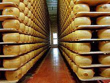 Parmigiano-Reggiano : une histoire d'amour et de lait, ça vous dit quelque chose ?