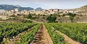 Espagne/Rioja : La Cueva del Contador, ça vous dit quelque chose ?