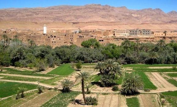 Le désert aux portes d'Alger