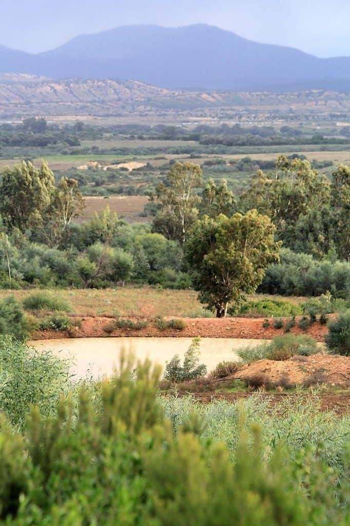 La région de Guerbes Sandhadja, classée mondialement, laissée à la merci de toutes les prédations privées (Photo: Karim Tedjani)