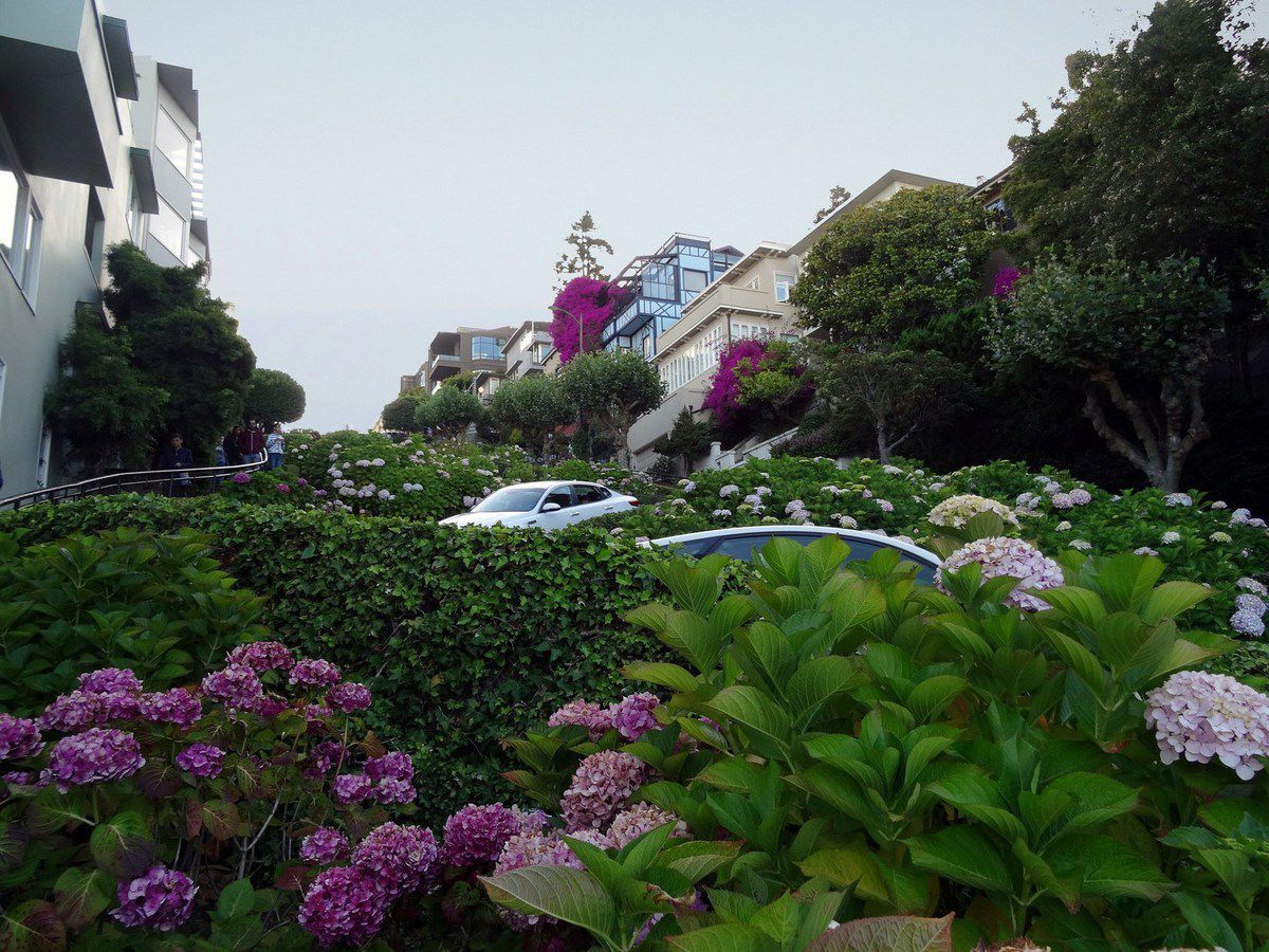 San Francisco Lombard Crooked street