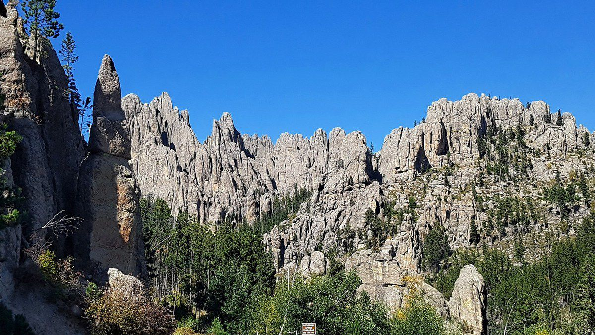 Custer State Park Cathedral Spires