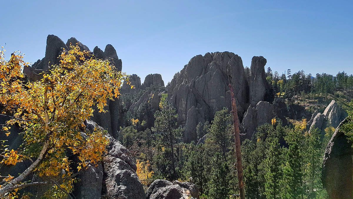 Custer State Park Needles scenic hwy