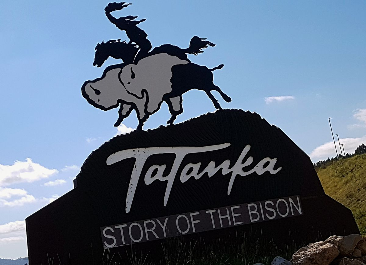 Tatanka A Story of The Bison