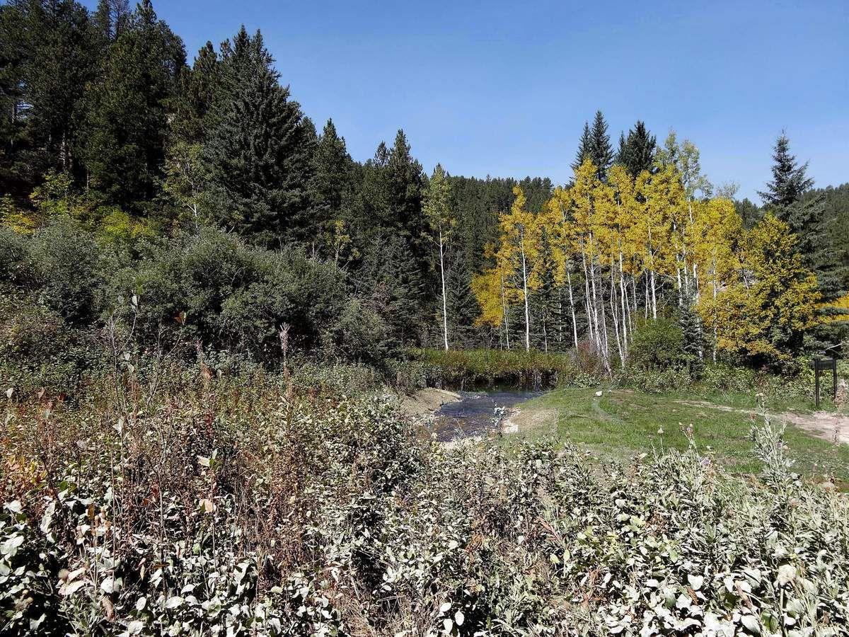 Spearfish Canyon Dances with Wolves film site