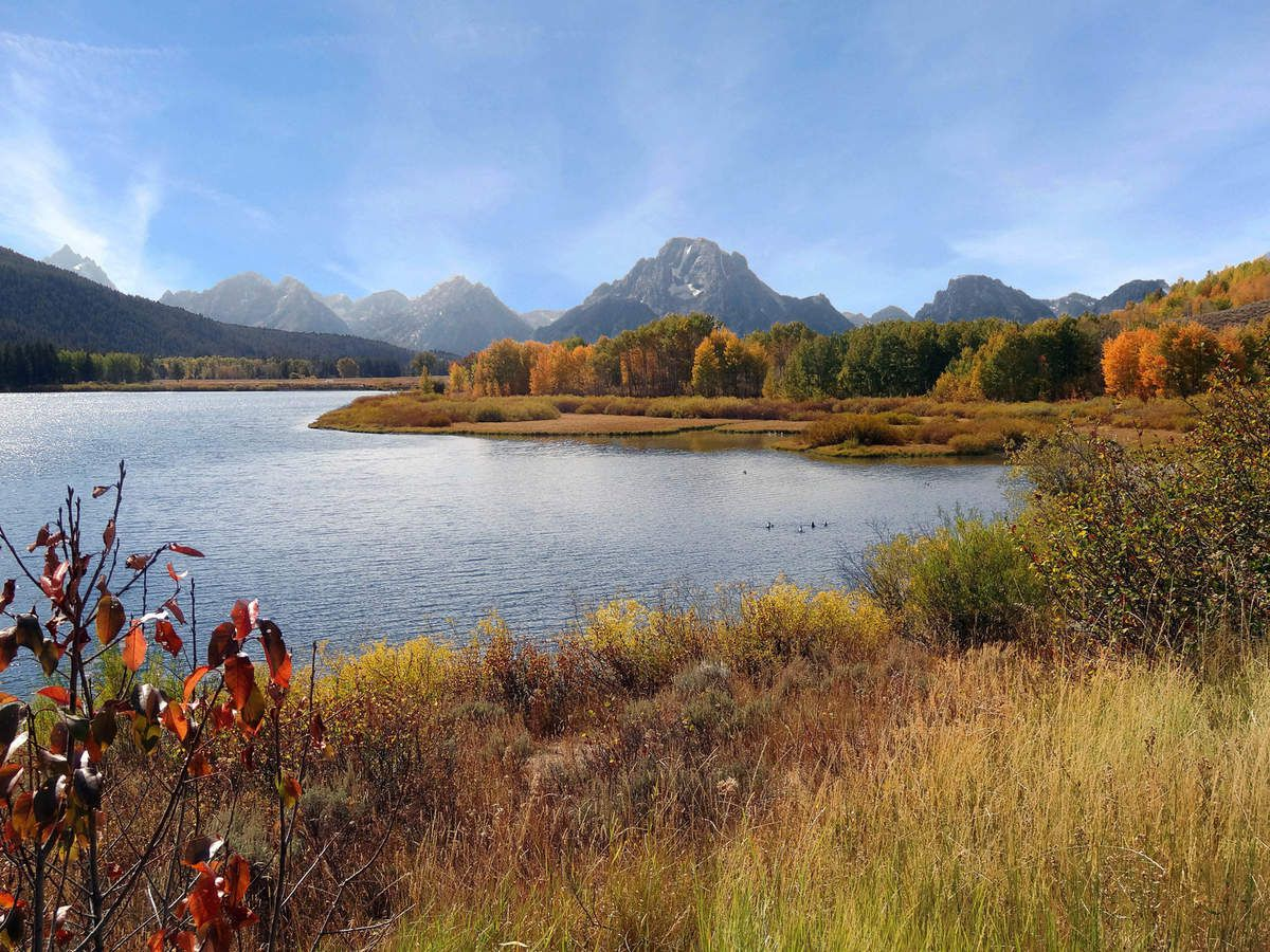 ALBUM AUTOMNE 2018 : GRAND TETON NP