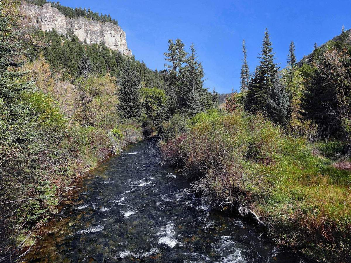 Spearfish river