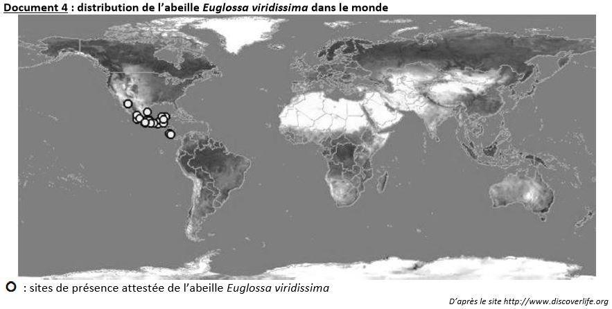 TS-Amérique du Sud 2015  (2B) : La culture de la vanille