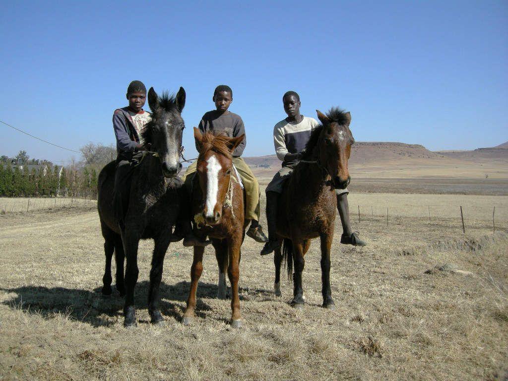 Des cavaliers qui montent à cru (Afrique du Sud)