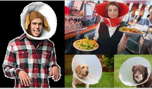 La Gobernadora de Maine ordena al sector de restaurantes que use collares de perro anti-COVID