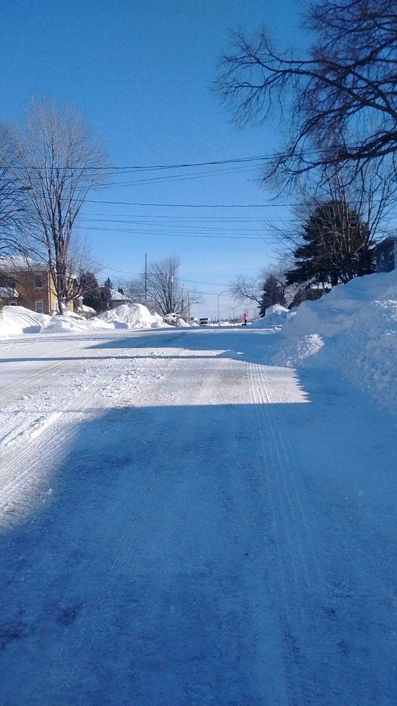 Canada : Celui qui bravait la tempête