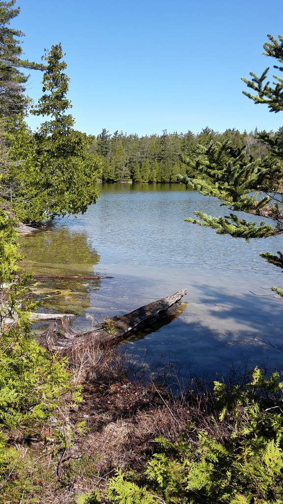 Canada - Celui qui se promenait dans la région des Grands Lacs (partie 1)