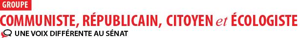 Violences au sein de la famille : ambiance délétère et débat tronqué au Sénat (groupe communiste; républicain, citoyen, écologiste au Sénat, 7 novembre 2019)