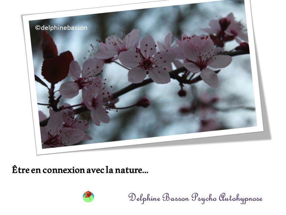 Autohypnose : Fleurs de printemps