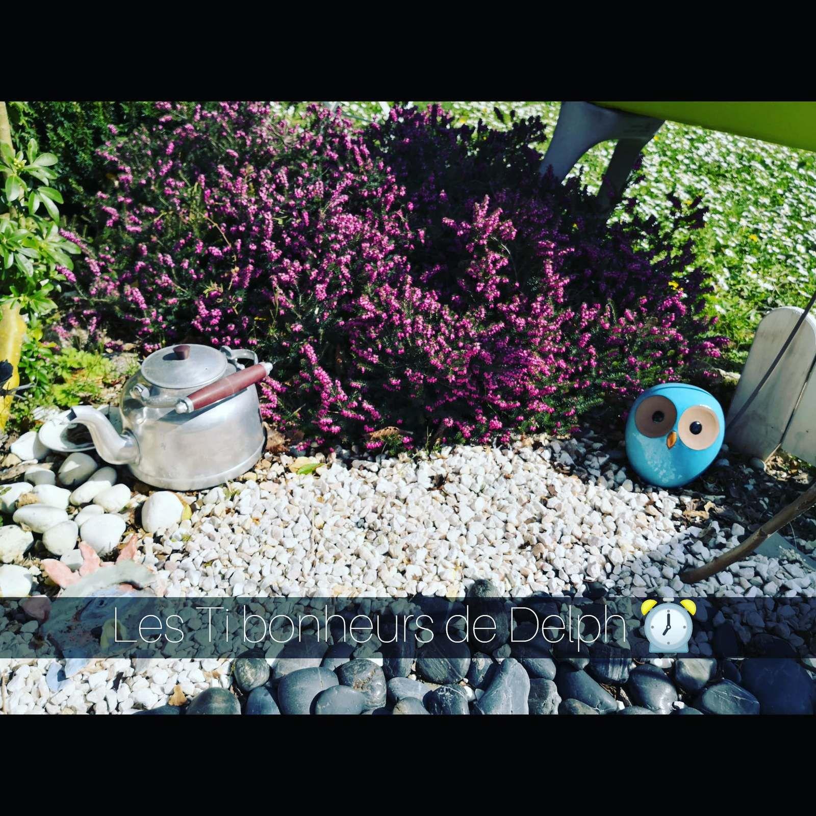 ❤️ Mon jardin Zen ❤️
