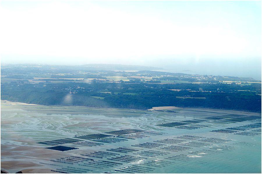 Survol de la côte d'émeraude -Baie de la Fresnaye - Moules de bouchots