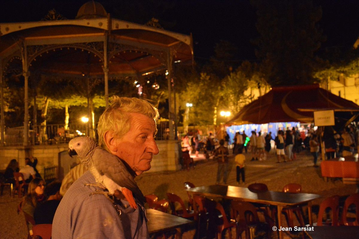 SALIES-DE-BEARN :  LES SOTTISES FONT LEUR FESTIVAL
