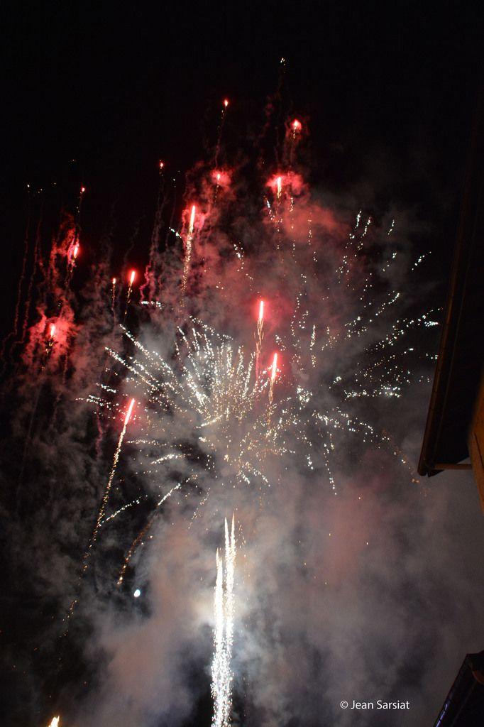 SALIES-DE-BEARN : La fête des sottises a soufflé ses 10 bougies