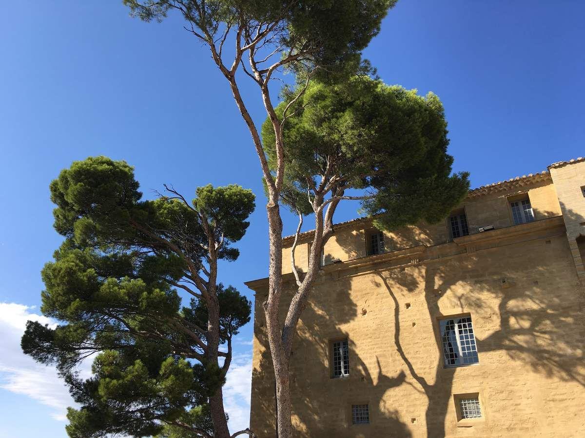 Le château de Saumane et le marquis de Sade...