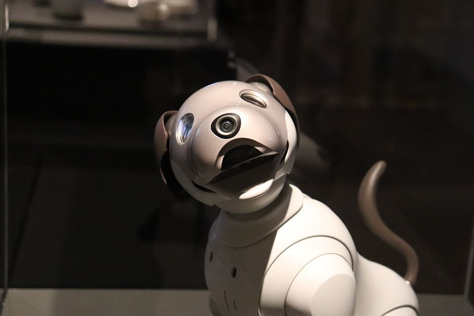 Les chiens-robots du futur...