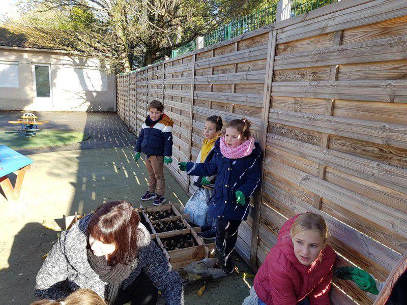Jardinage - photos Isa