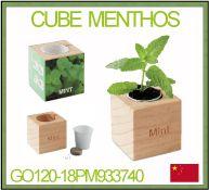 Plant de menthe à faire pousser dans un cube en bois avec personnalisation