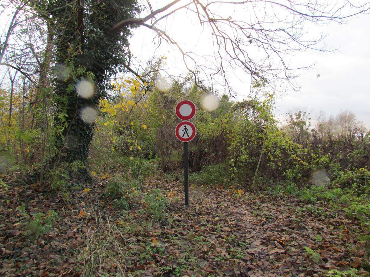 Parcours sport santé découverte Chelles Gournay